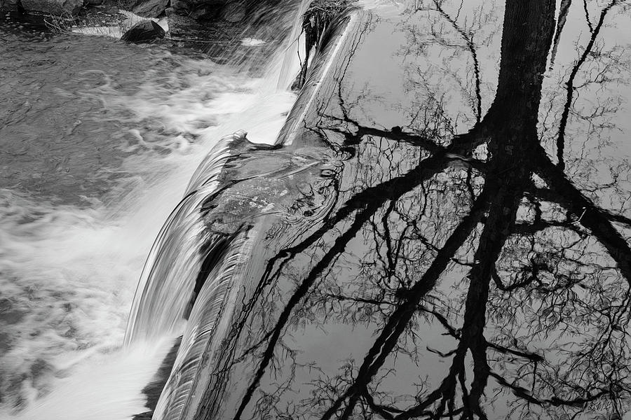 Nemasket River II BW by David Gordon