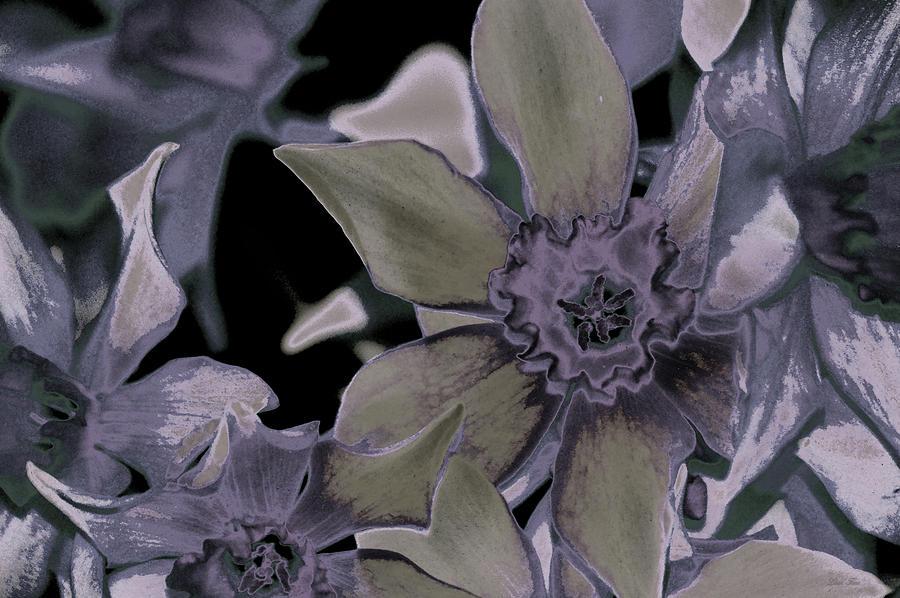 Neon Daffodil NBR 10 Vintage by Lesa Fine