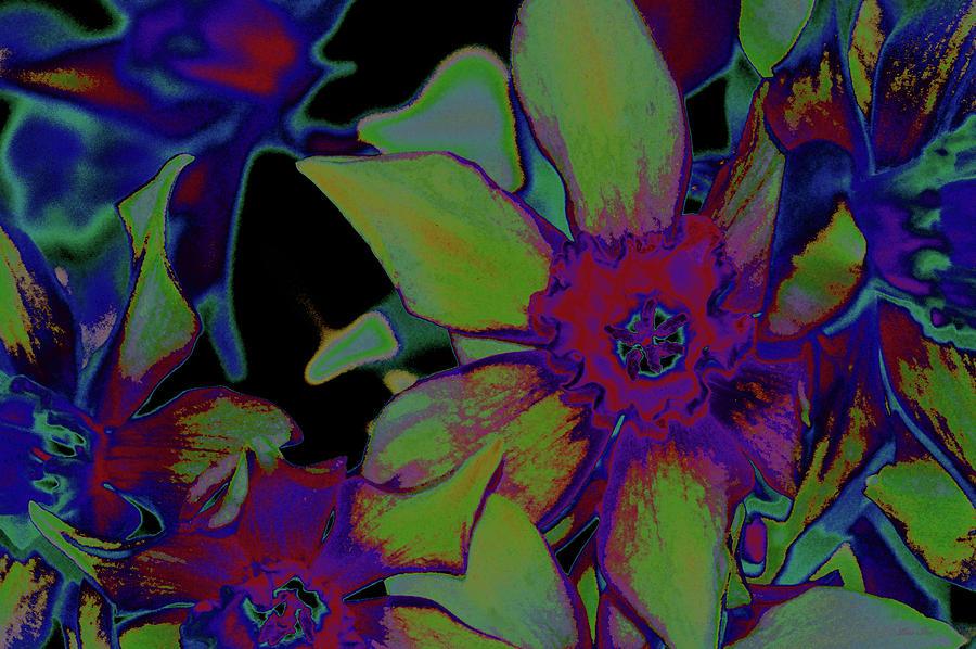 Neon Daffodil NBR 3 by Lesa Fine
