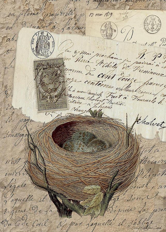 Nest Eggs by Terry Kirkland Cook