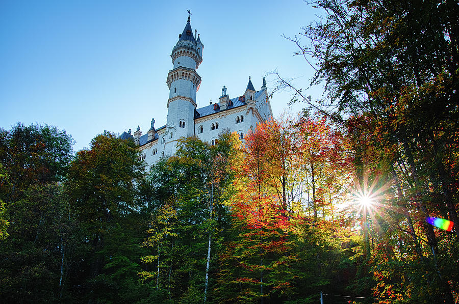 Neuschwanstein by Raf Winterpacht