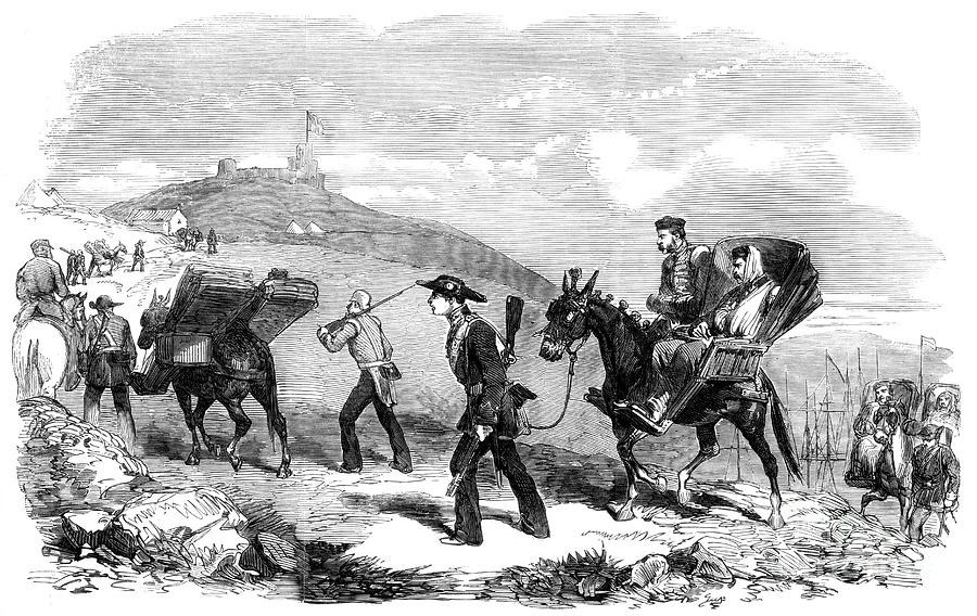 New Ambulance Transport Service, 1855 Drawing by Print Collector