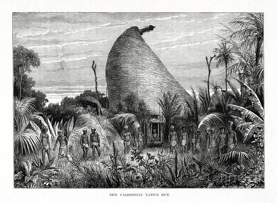 New Caledonian Native Hut, Southwest Drawing by Print Collector