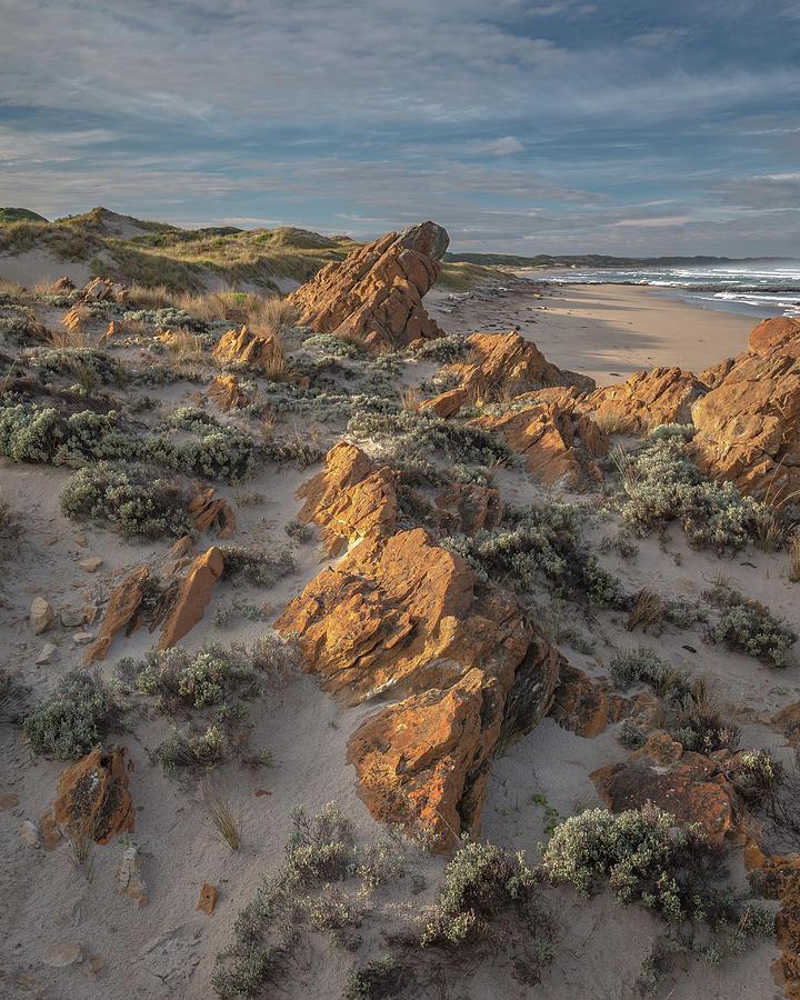 New Day - Western Tasmania Photograph