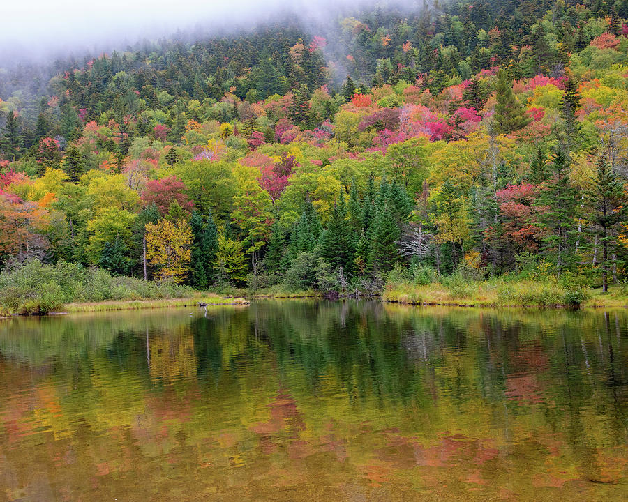 New England Fall and Lake by Rebecca Cozart