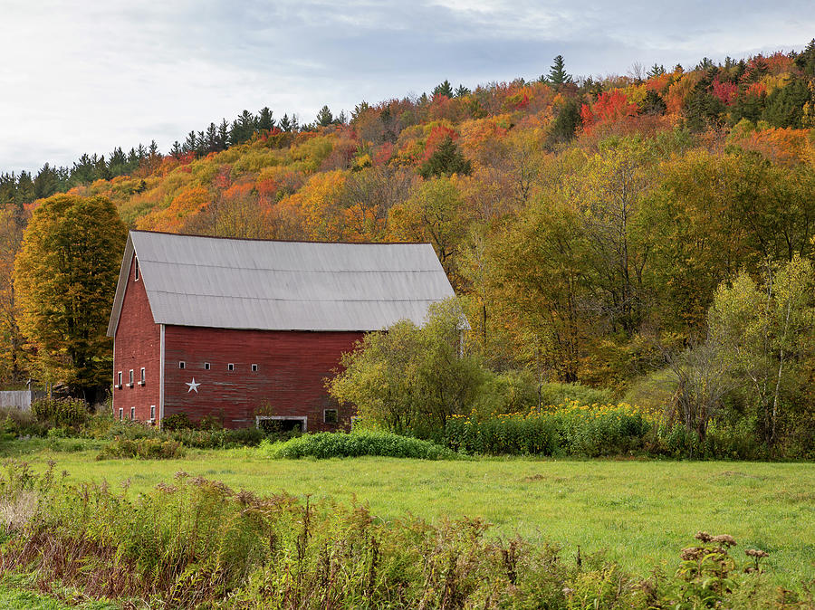 New England Red Barn in Fall by Rebecca Cozart