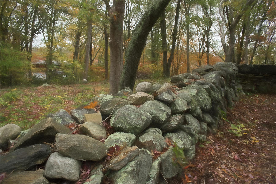 New England Stone Wall 1 by NANCY DE FLON