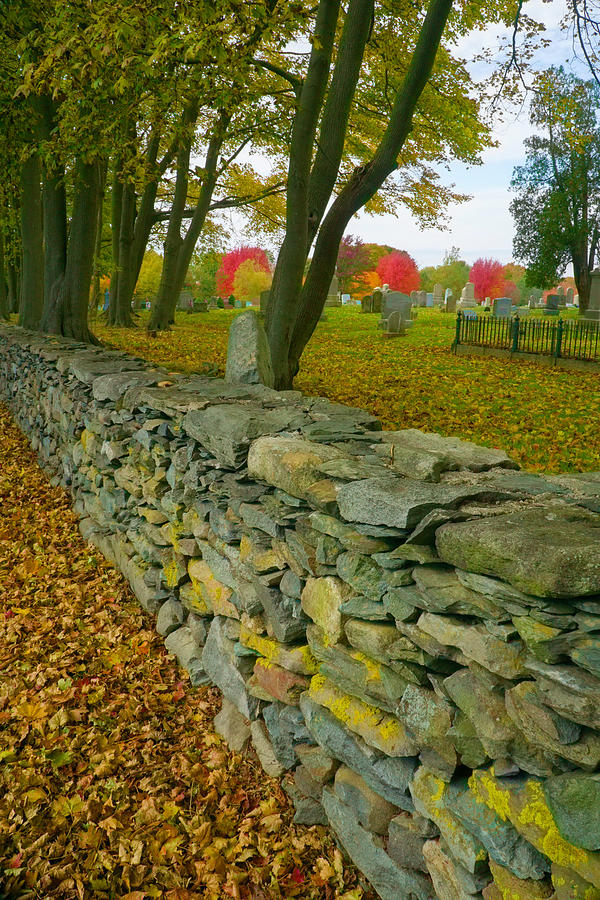 New England Stone Wall 2 by NANCY DE FLON