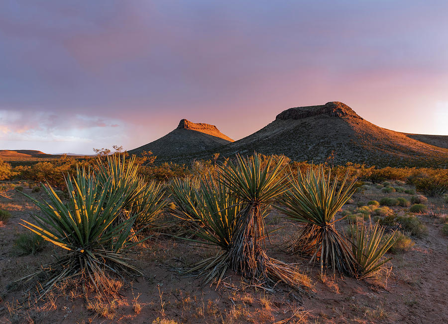 New Mexico Buttes by Karen Conley