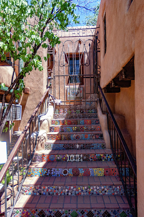 New Mexico Steps by Mary Courtney