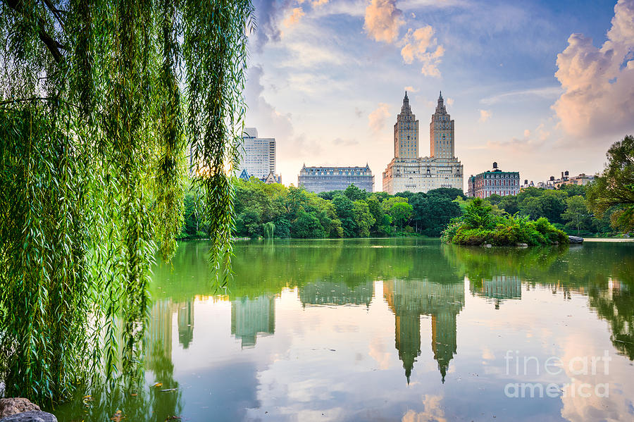 Usa Photograph - New York City, Usa At The Central Park by Sean Pavone