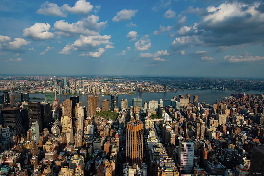 New York Skyline Empire State by Crystal Wightman