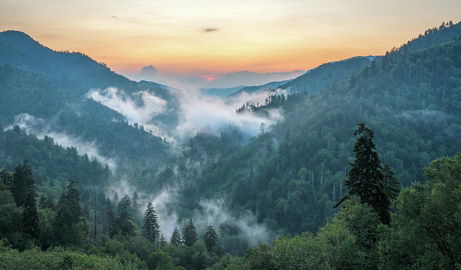 Newfound Gap Great Smoky Mountains by Mike Koenig