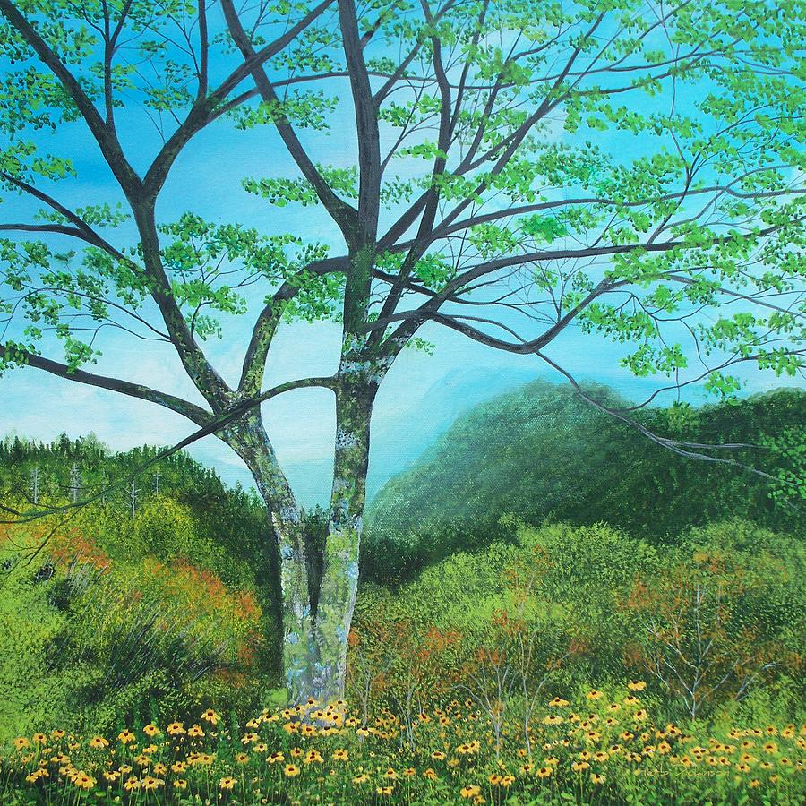 NewFound Gap Overlook, NC by Herb Dickinson