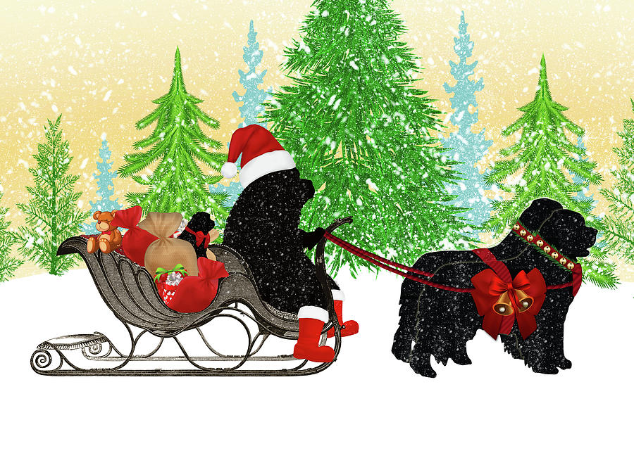 Newfoundland Dog Digital Art - Newfoundland Dog Christmas Card by Christine Mullis