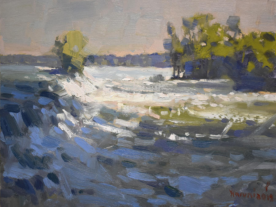 Niagara River Painting - Niagra River at Goat Island by Ylli Haruni