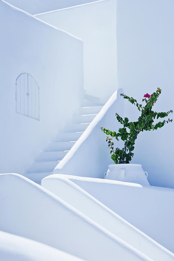 Nice White Stairs In Oia Village Photograph by Mbbirdy