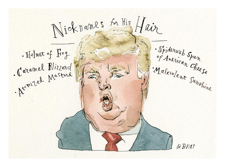 Nicknames For His Hair Painting by Barry Blitt
