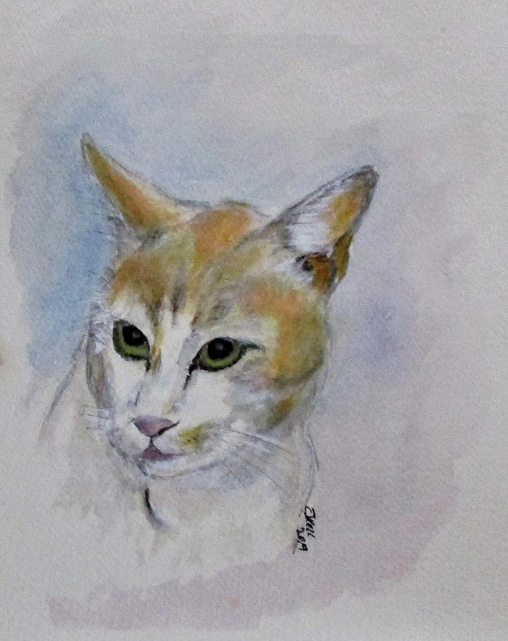 Nigel The Cat by Clyde J Kell
