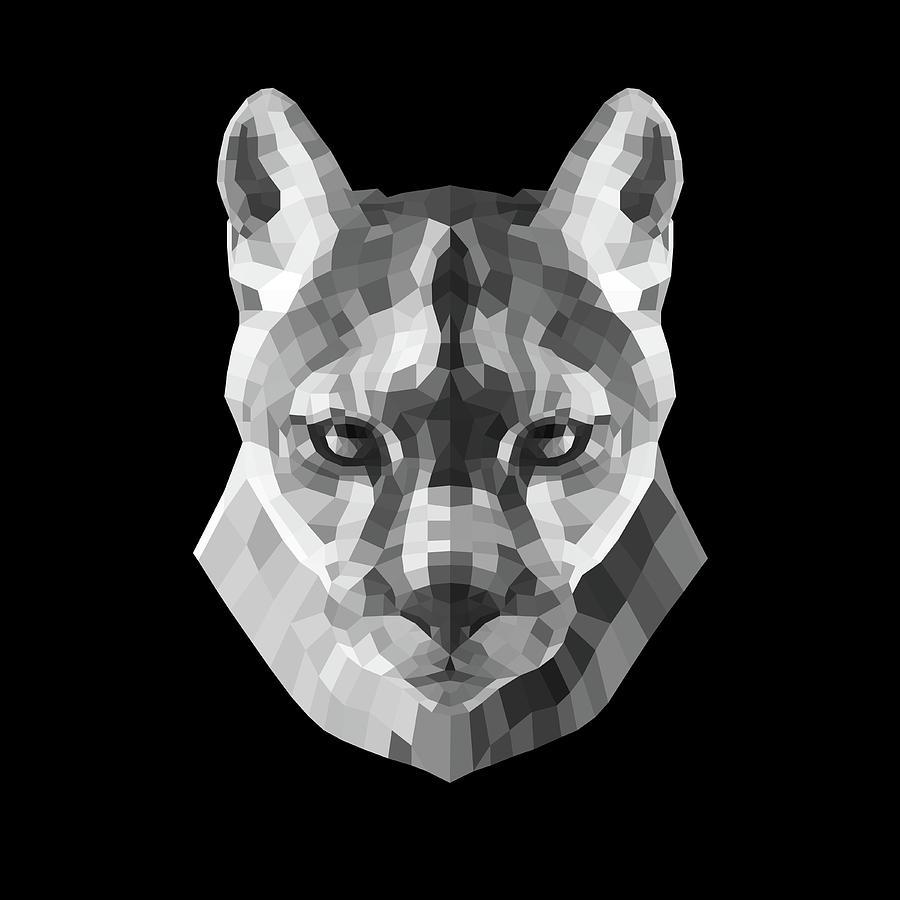 Mountain Lion Digital Art - Night Mountain Lion by Naxart Studio