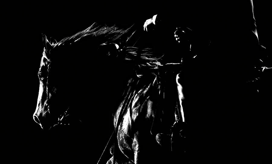 Horse Photograph - Night Riders by Lincoln Rogers