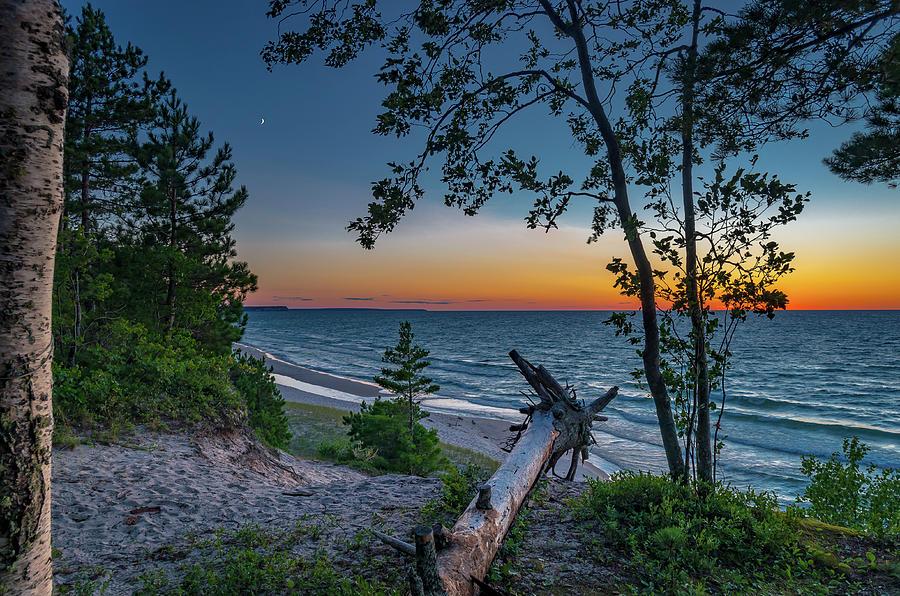 Nightfall by Gary McCormick