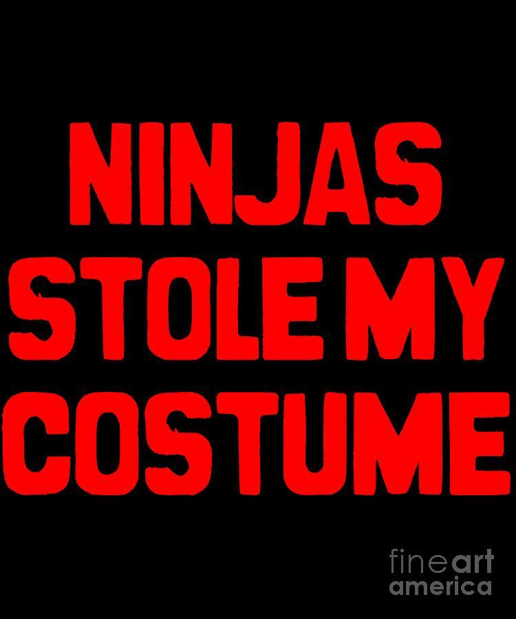 Ninjas Stole My Costume Easy Halloween by Flippin Sweet Gear
