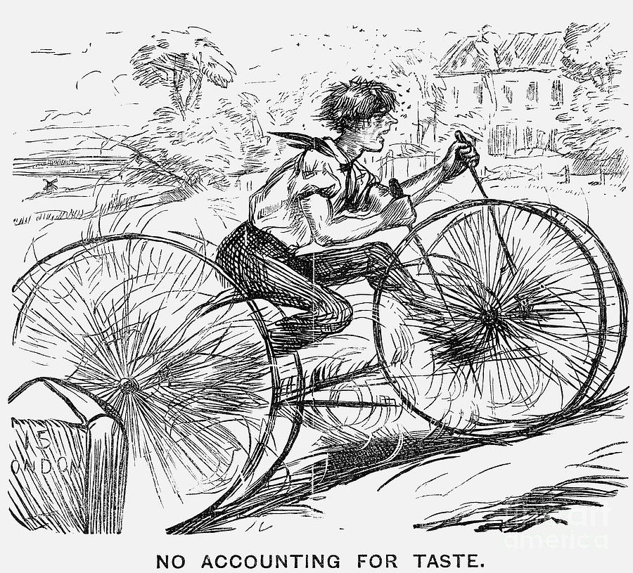 No Accounting For Taste, 1866 Drawing by Print Collector