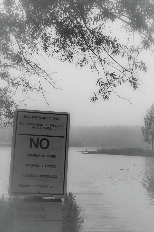 NO Feeding Ducks by James L Bartlett