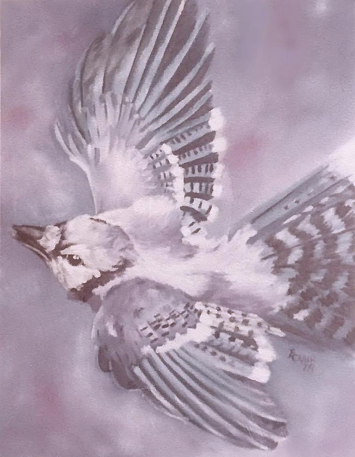 North American Blue Jay by Barbara Keith