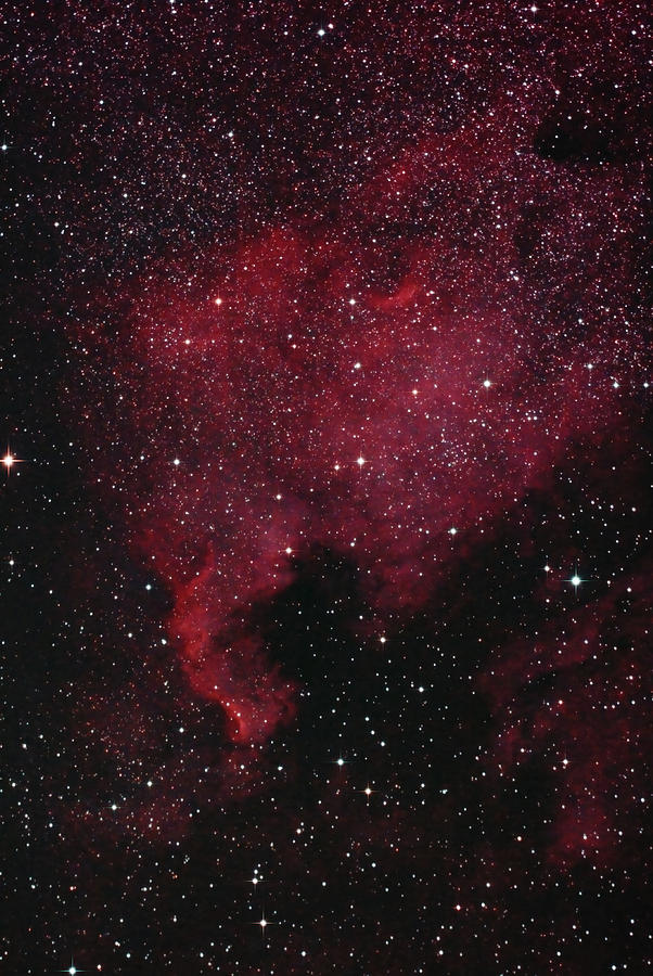 North American Nebula by Lon Dittrick