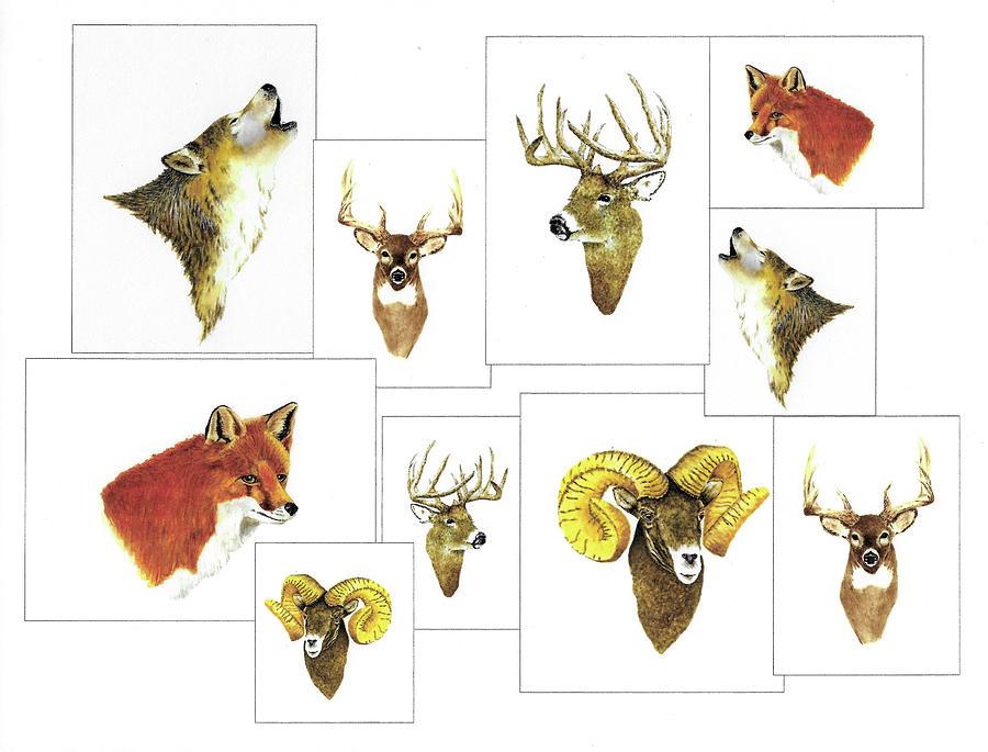 Animals Painting - North American Wildlife Number Three by Michael Vigliotti