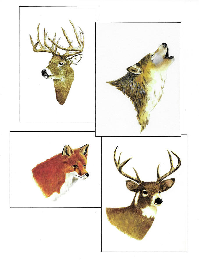 Animals Painting - North American Wildlife Number Two by Michael Vigliotti