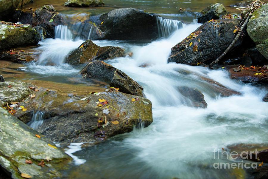 North Carolina Rivers Photograph