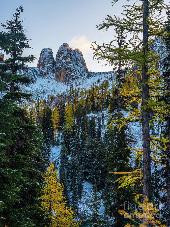North Cascades Spires and Golden Larches by Mike Reid
