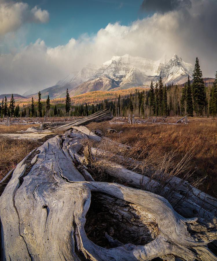 North Fork Magic / Polebridge, Montana  by Nicholas Parker