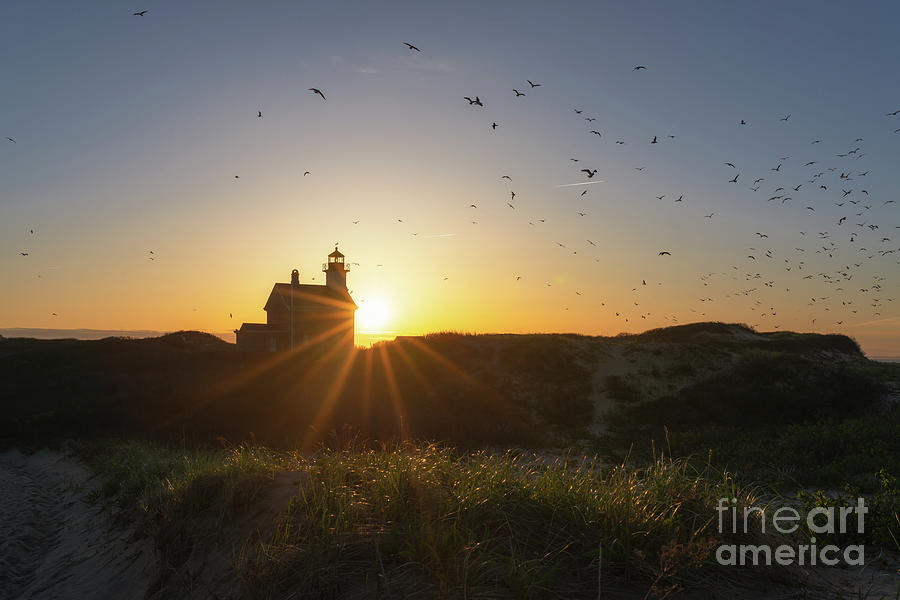 Rhode Island Photograph - North Lighthouse Silhouette by Michael Ver Sprill
