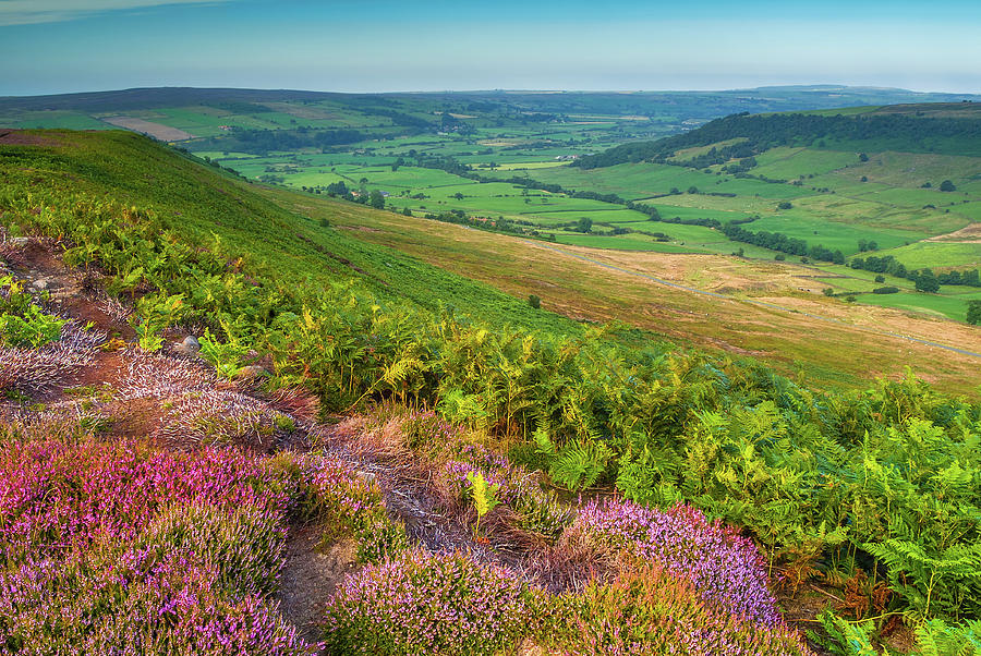 Danby Photograph - North York Moors National Park by David Ross