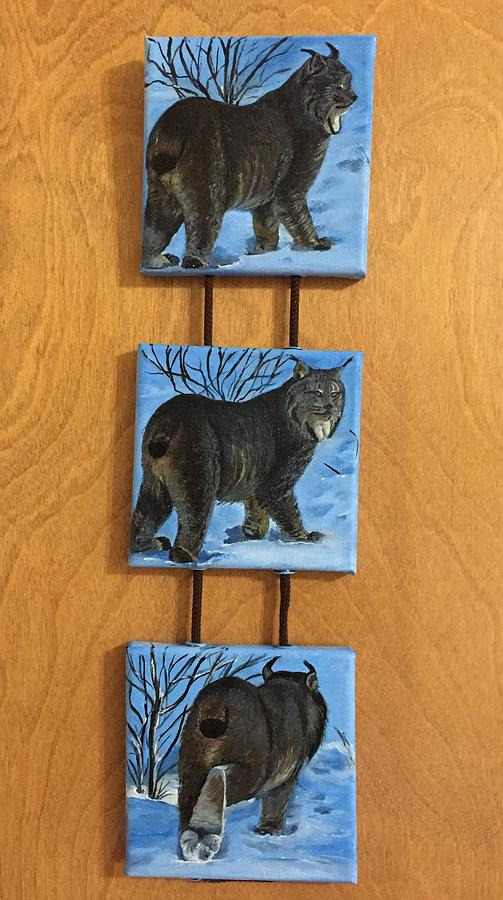 Northern Alberta  Lynx  by Sharon Duguay