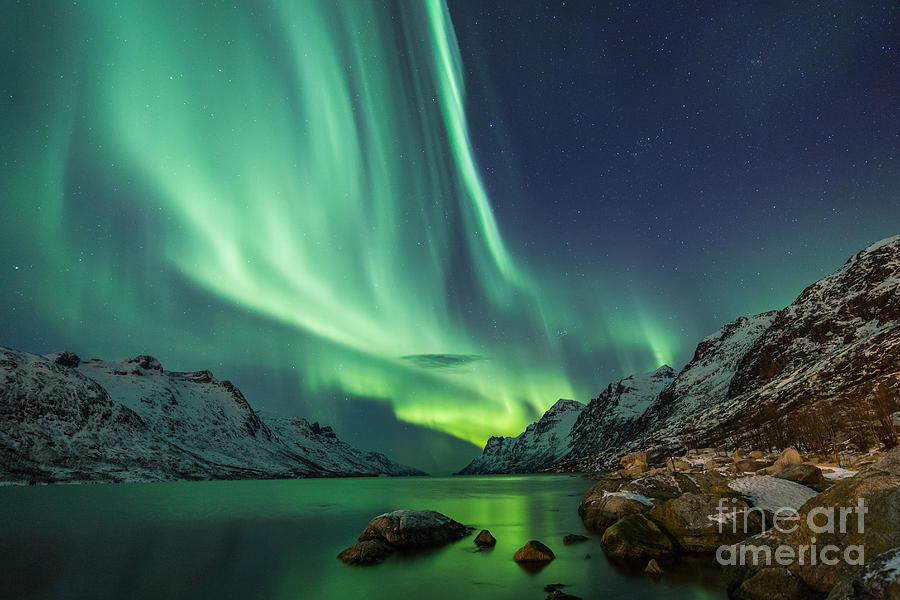 Beauty Photograph - Northern Lights Above Waters Edge by Jamen Percy