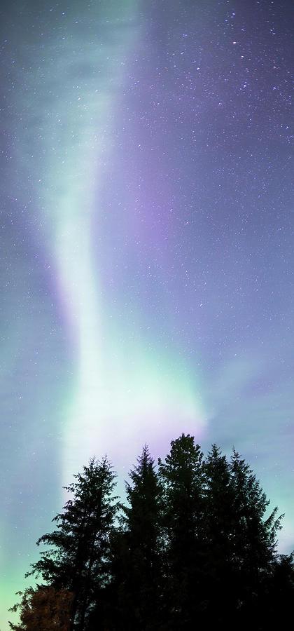 Northern Lights in Southeast Alaska by Michele Cornelius