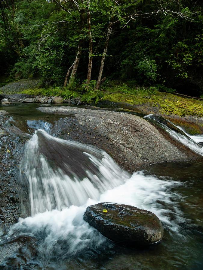 Northwest Cascade by Steven Clark