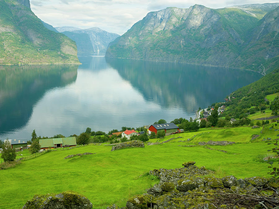 Norway, Sognefjord, Aurland, Farms Photograph by John Wang