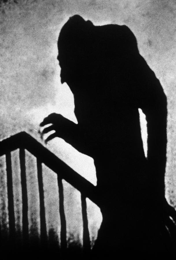 Nosferatu Photograph - Nosferatu The Vampire by European School