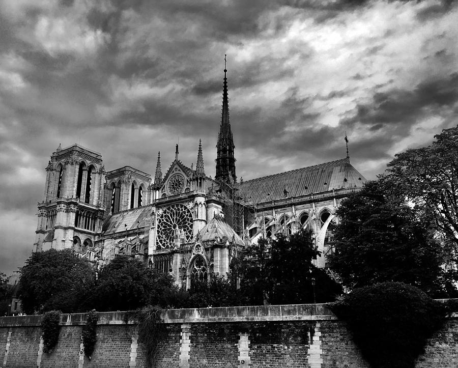 Notre Dame Cathedral by Daniele Smith