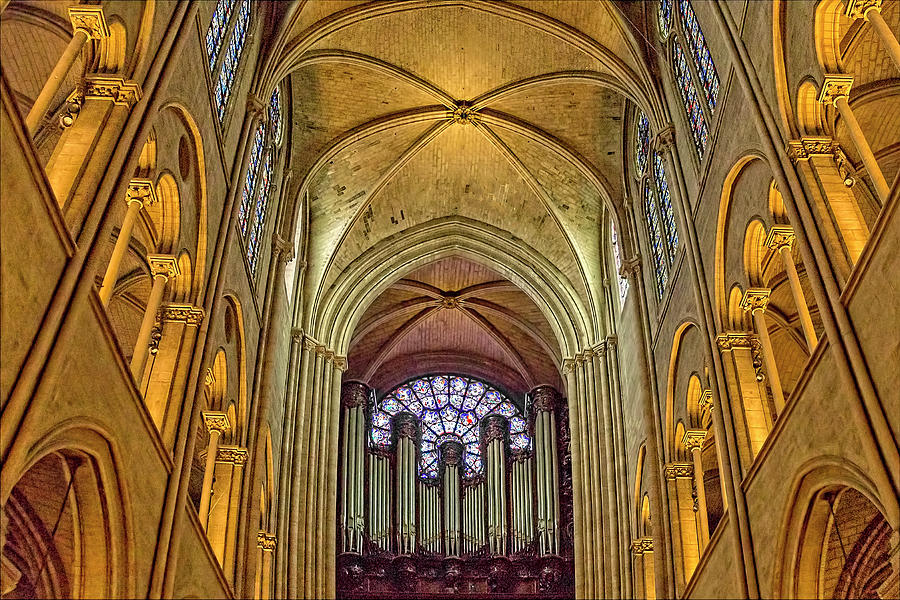 Notre Dame Cathedral in Paris by Kay Brewer