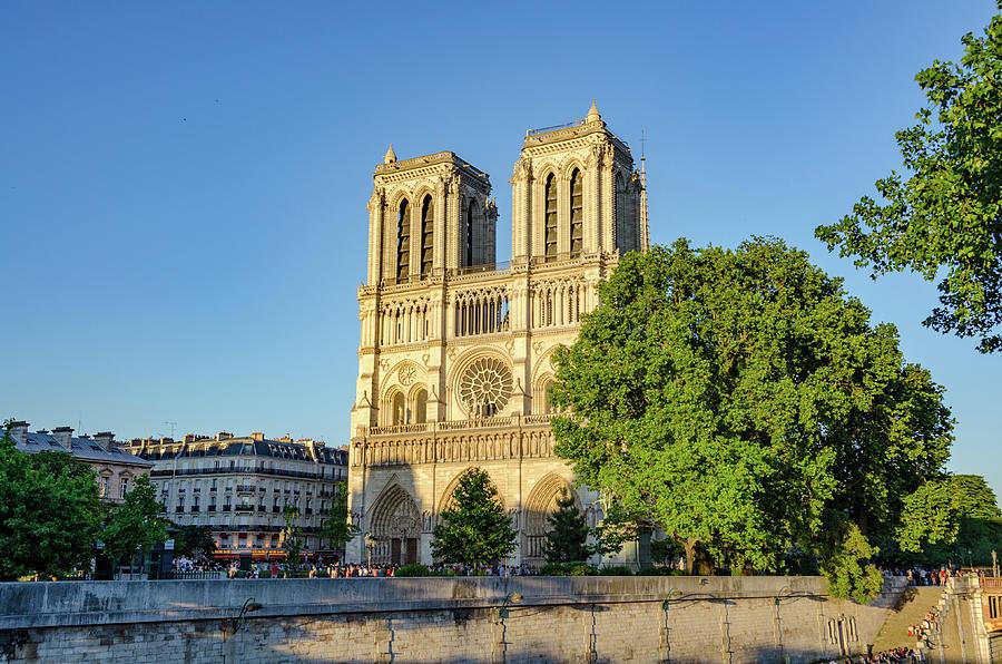 Notre Dame in Evening Light by Douglas Wielfaert