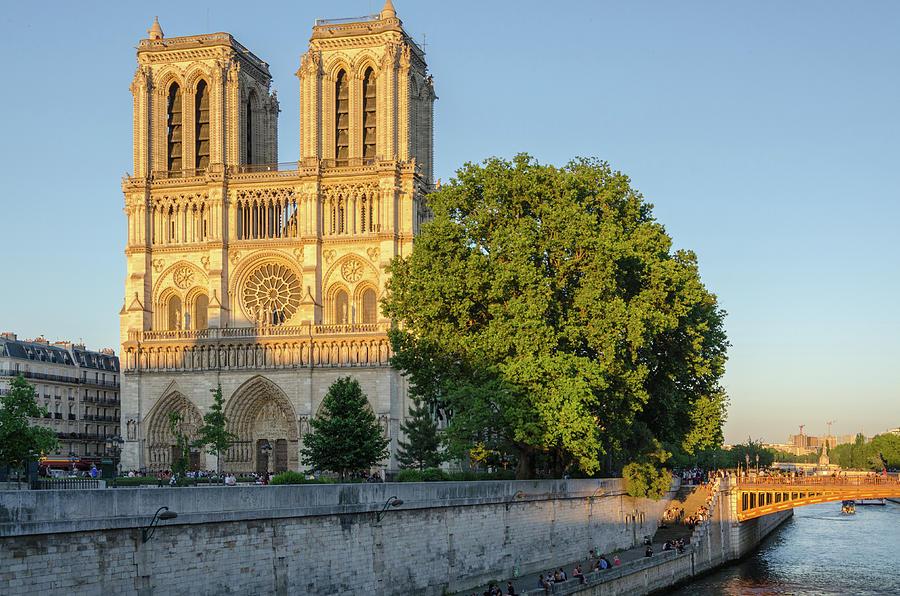 Notre Dame in Spring Evening Light by Douglas Wielfaert