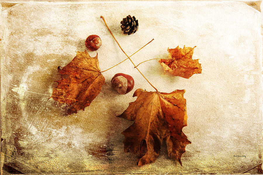 November Mood by Randi Grace Nilsberg