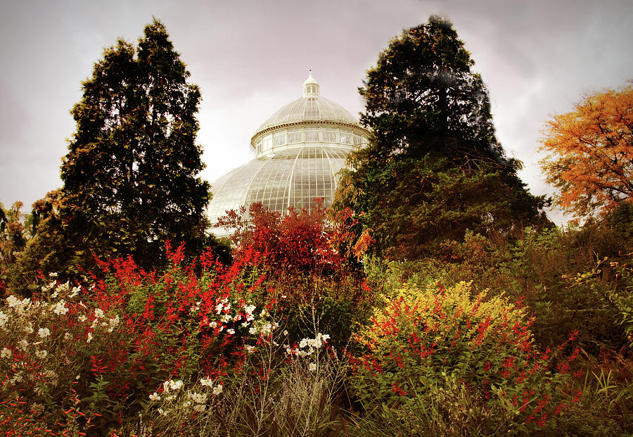 Greenhouse Photograph - Autumn Cupola by Jessica Jenney